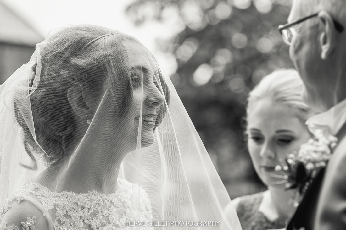 bride with her vale
